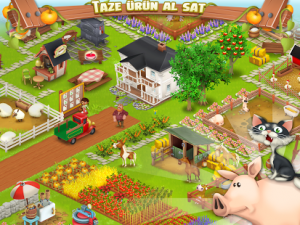 Hay Day2